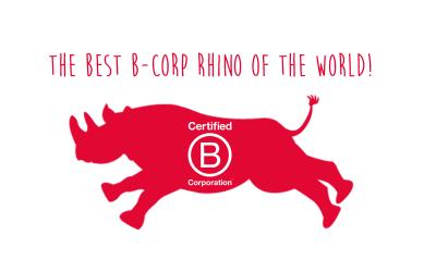 BBK/Door Vriendschap Sterker bij de B Corp Summer Summit
