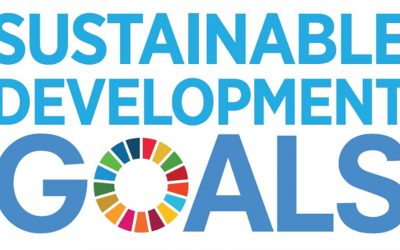 Sustainable Development Goals verbinden op alle niveaus
