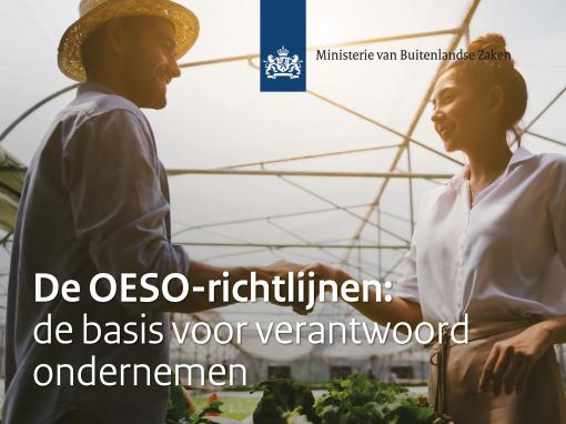De OESO-richtlijnen